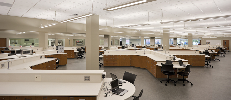 Science & Technology | Pharmacy Skills Laboratory